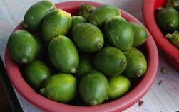 槟榔:半面西施半面毒